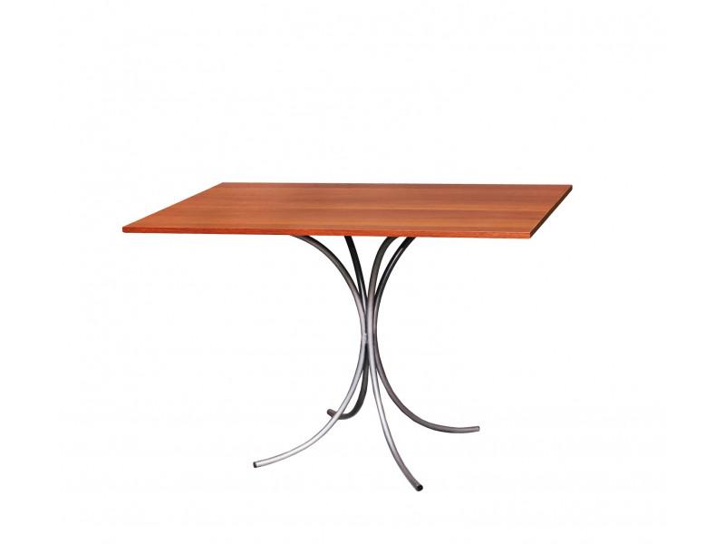 Стол обеденный Тюльпан (1000х600х750 мм)