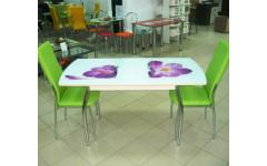 Стол обеденный Комфорт-3 раздвижной с фотопечатью 1500(1200)х800х750 (ДхГхВ)